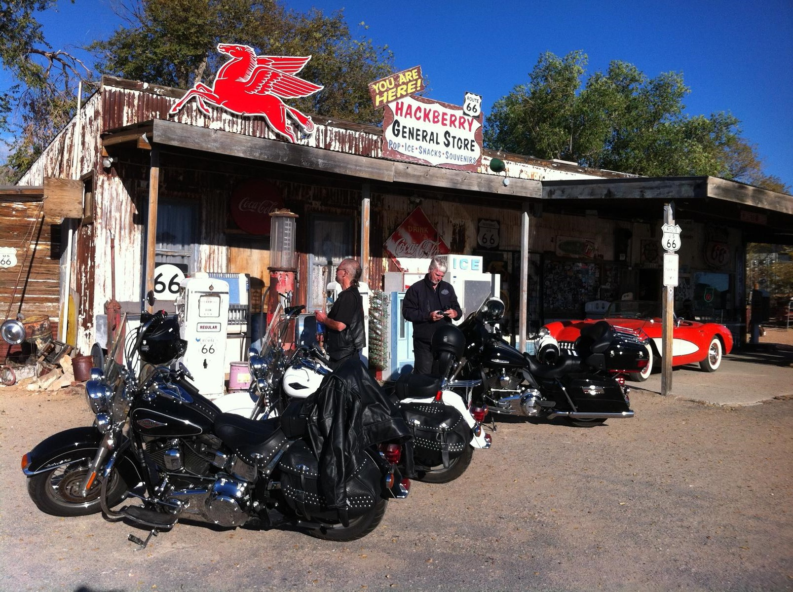 Hotels In Miami Harley Florida